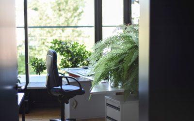 5 voordelen van groen op kantoor